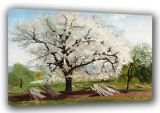 Hill, Carl Fredrik: The Flowering Fruit Tree/Apple Tree in Blossom. Fine Art Canvas. Sizes: A3/A2/A1 (00493)